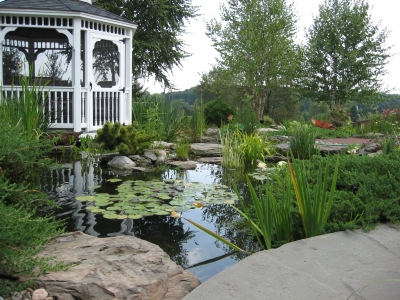 Koi Pond accented by Landscaping