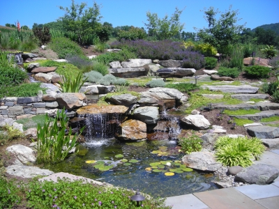 Waterfall and Landscaping