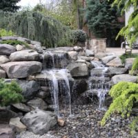 122 Pondless Waterfall and Evergreen Plantings