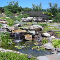 123 Fish Pond and Waterfall Built Into Hillside