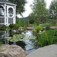 125 Nature-Inspired Fish Pond with Boulders