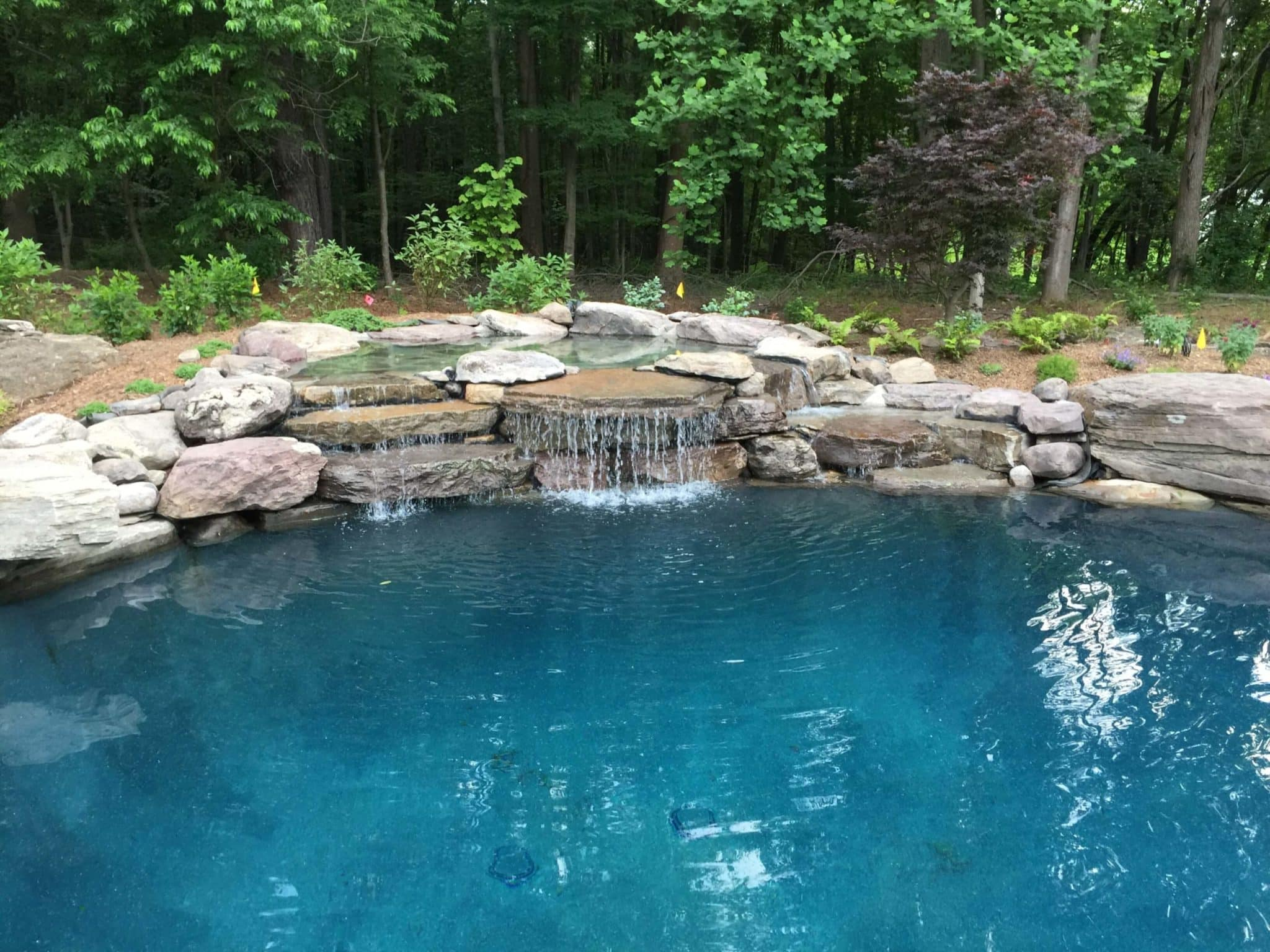 604 Residential Pool with PA Boulder Waterfall and Naturalized Edge