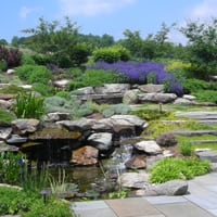 Stone Walls and Landscape Design in Frederick, MD