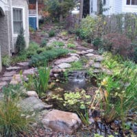 Side Yard Slope Transformed with Stream and Fish Pond